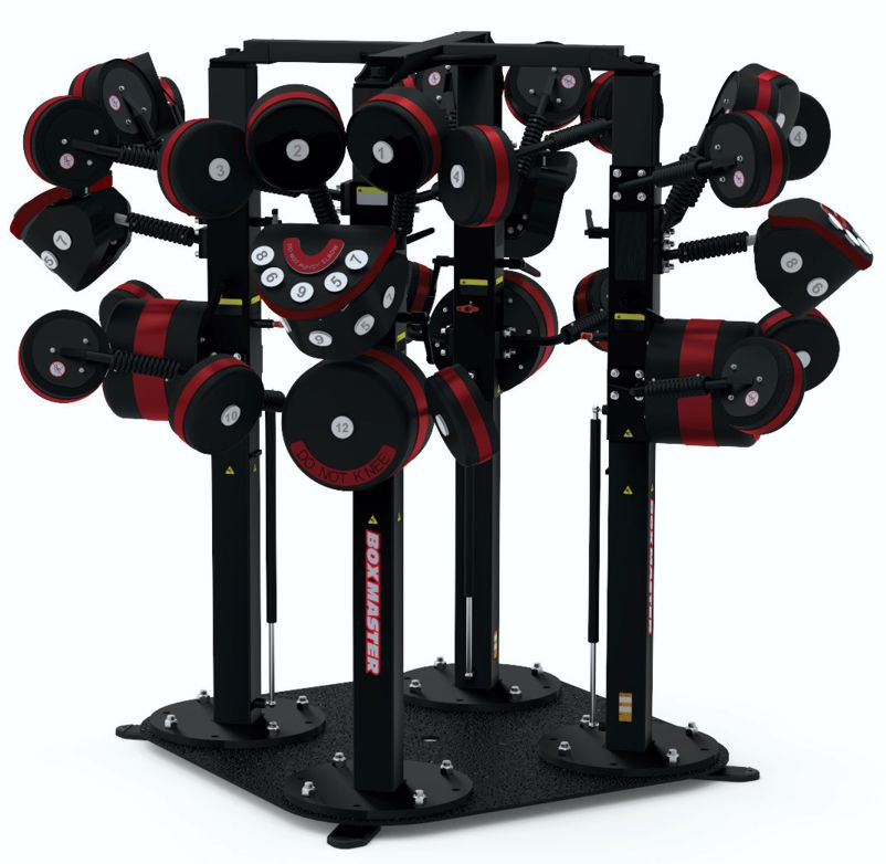 BoxMaster Functional Training 4 Station