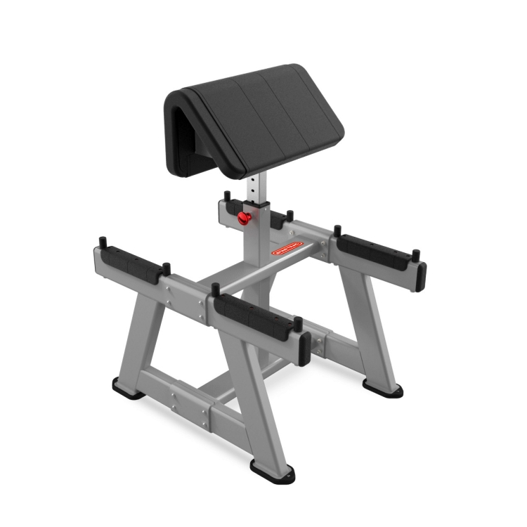 Standing Preacher Curl Gym Equipment South Africa
