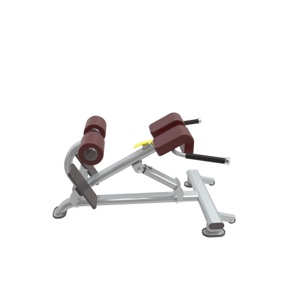Multi hyper extension gym equipment south africa